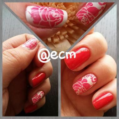 rojas rosas 1