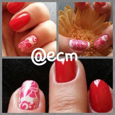 rojas rosas 2